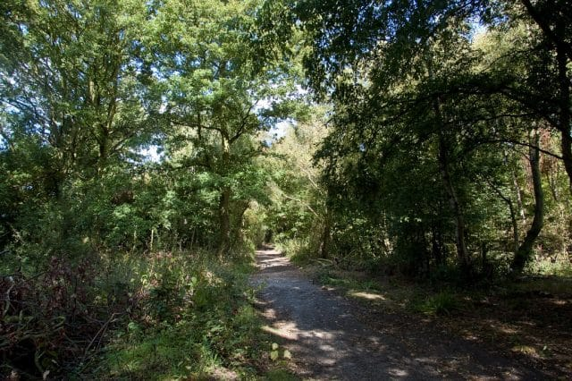 The path to Brookman's Park VOR