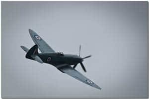 Goodbye, Spitfire